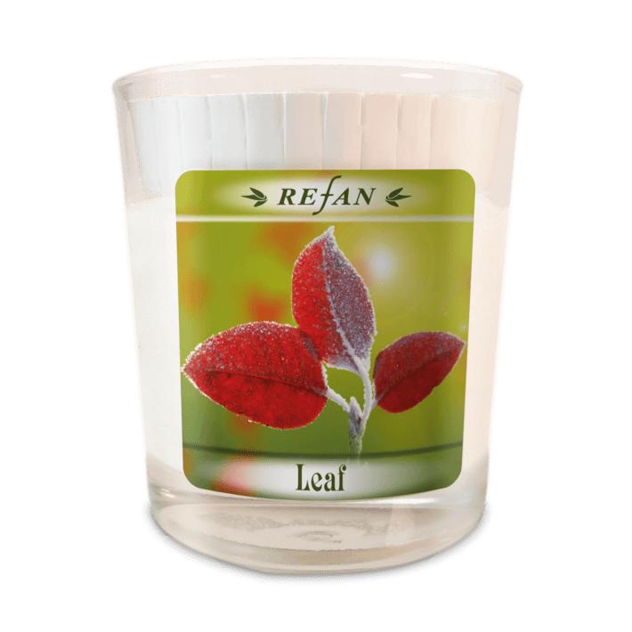 Sojavahast lõhnaküünal Leaf – klaasis (1973)